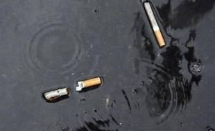 Les livraisons de tabac aux buralistes français ont fortement chuté, de 10%, en mars par rapport au mois correspondant de 2007, selon des chiffres d'Altadis distribution obtenus samedi par l'AFP auprès d'un cigarettier opérant dans l'Hexagone.