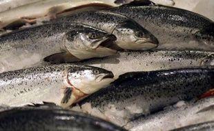 Les pays de l'UE et le Parlement européen ont trouvé un accord dans la nuit de mercredi à jeudi pour rendre la pêche communautaire plus durable en limitant progressivement les pratiques de surpêche dès 2014.