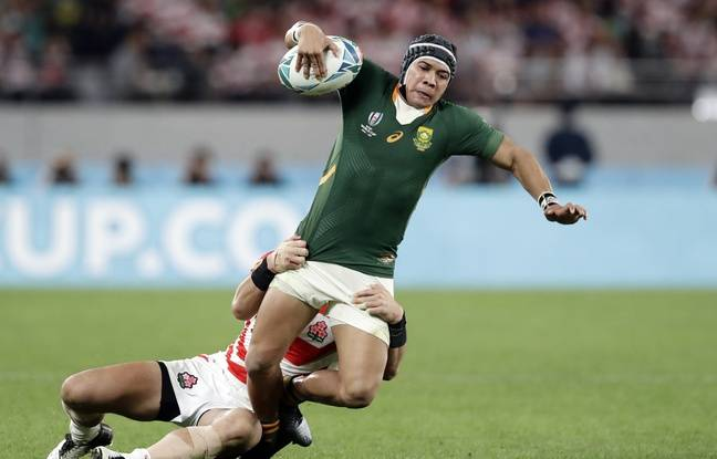 Coupe du monde de rugby: Le fantastique Cheslin Kolbe forfait pour Afrique du Sud-Galles, gros coup dur pour les Springboks