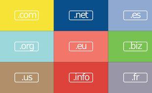 Même les politiques les plus chevronnés se font avoir avec les noms de domaines sur Internet.