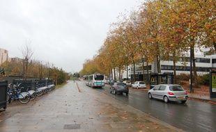 L'avenue Henri Fréville à Rennes, où un homme en fauteuil roulant a été percuté par une voiture.