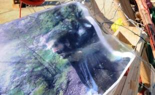 La photo de Rémi Fraisse sur le lieu où son corps a été retrouvé, le 29 octobre 2014 sur le site de Sivens près de Gaillac