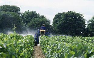 Illustration d'un épandage de pesticide dans une vigne.