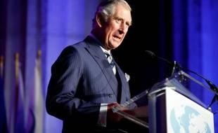 Le Prince Charles s'adresse à des élus américains à Washington, le 19 mars 2015
