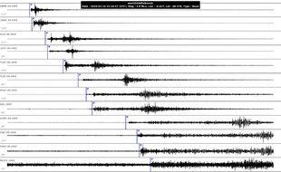 Capture d'écran des sismogrammes du Réseau national de surveillance sismique après le tremblement de terre à Brest, le 19 février 2020.