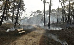 L'incendie a détruit 165 hectares de forêt à Anglet.