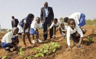 Mi-septembre, le directeur général de la FAO Jacques Diouf a annoncé de nouveaux chiffres alarmants sur la faim dans le monde touchant aujourd'hui de 923 à 925 millions de personnes contre 850 millions avant la flambée des prix et les émeutes qui l'ont suivie au printemps dernier.