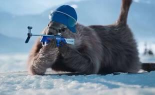 Les marmottes mises en scène dans un spot France 3.