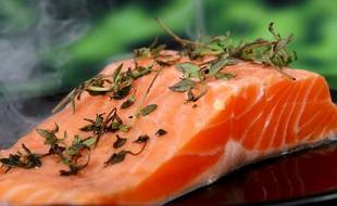 L'importation de saumon OGM est interdite dans l'UE.