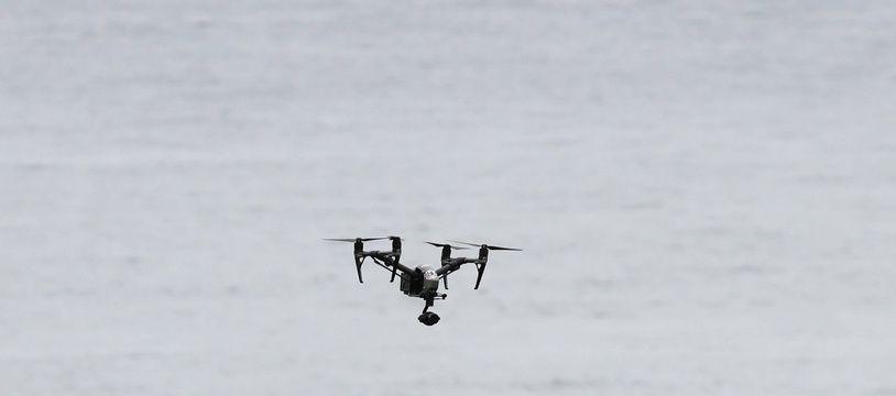 Illustration d'un drone (en bas). En haut de l'image, c'est un goéland