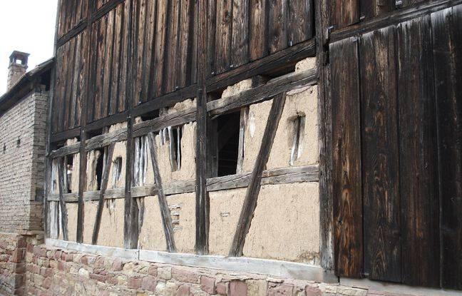Le séchoir à tabac de Lipsheim est composé de torchis, une rareté.