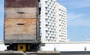 Les ruches installées sur le toit de La Poste du Colombier sont désormais connectées.