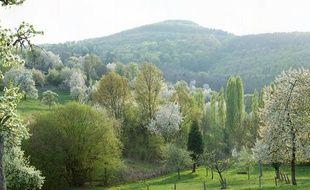 La commune de Niederbronn est située dans le territoire du Parc naturel régional des Vosges du Nord, dans le nord de l'Alsace.
