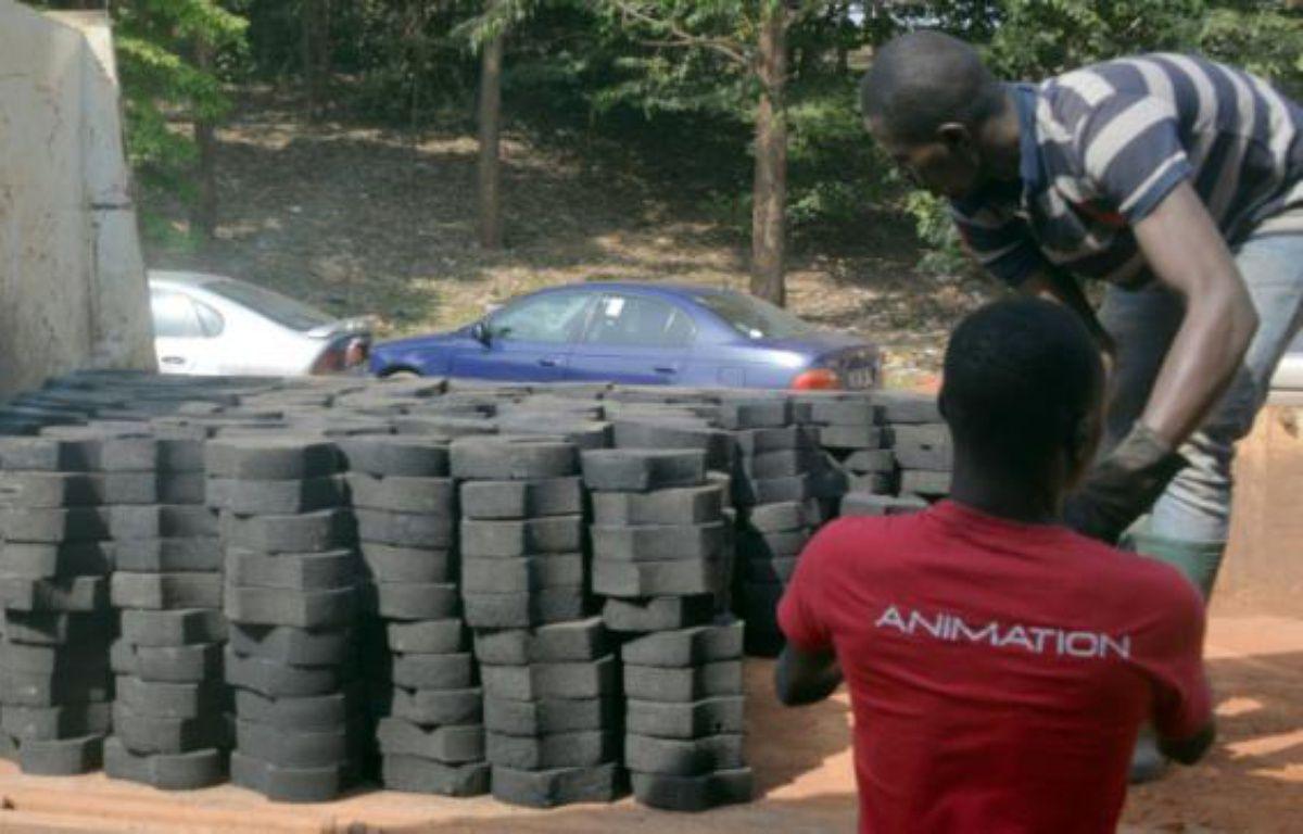 Des Camerounais transportent des déchets plastiques recyclés en pavs le 1er février 2016 à Yaoundé – REINNIER KAZE AFP