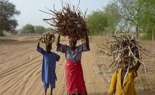 Sécheresse au Niger, en avril 2010.