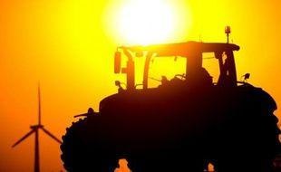 Les prix agricoles mondiaux ont enregistré en août une forte baisse et atteint leur plus bas niveau en sept ans, principalement en raison de l'abondance de l'offre