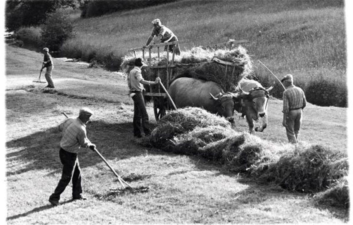 """Photo extraite du livre """"Les derniers paysans"""" de Serge Chevallier et Phillipe Dubois (ed. Delachaux). – @Serge Chevallier"""