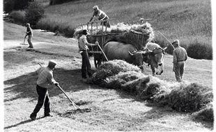 """Photo extraite du livre """"Les derniers paysans"""" de Serge Chevallier et Phillipe Dubois (ed. Delachaux)."""
