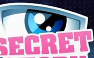 Secret Story, le néo-Loft de TF1