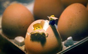 Qui du Lego ou de l'œuf est arrivé sur Terre en premier ? Vous avez quatre heures...