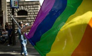 Le drapeau arc-en-ciel lors de la gay pride de Paris, le 29 juin 2015