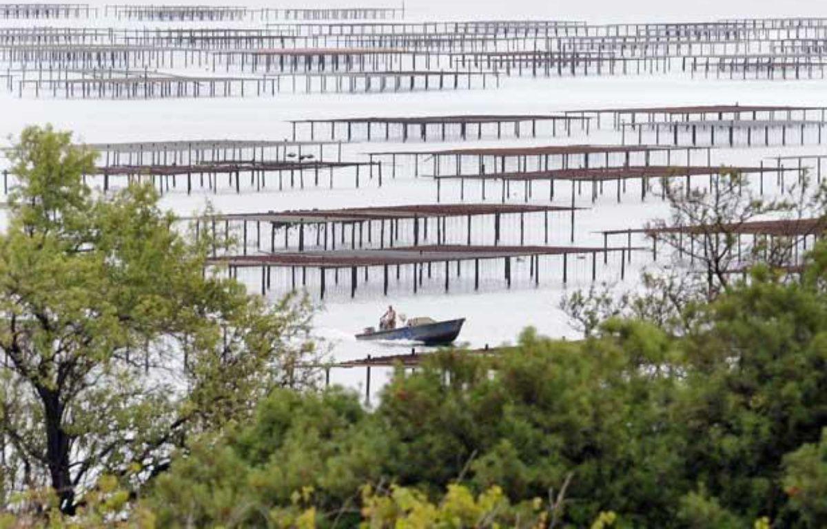 Vue générale d'un parc à huîtres dans l'étang de Thau à Marseillan. – PASCAL GUYOT / AFP