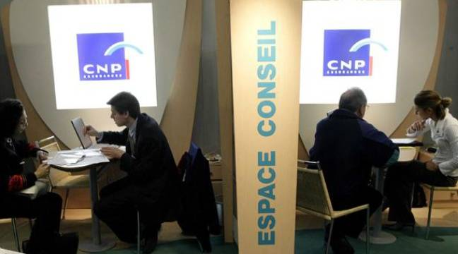 cnp assurances branl par sa filiale chypriote. Black Bedroom Furniture Sets. Home Design Ideas
