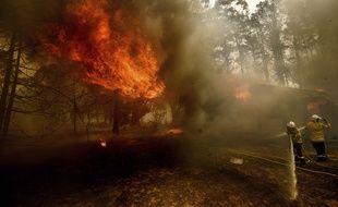 Les pompiers luttent contre le feu en Nouvelle-Galles du Sud (sud-est de l'Australie), le 23 janvier 2020.