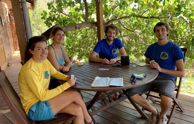 Colline, Sophie, Simon et Damien ont quitté Toulouse et la Haute-Savoie pour être bénévoles au Jardin botanique du Désert de la Désirade.