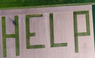Au mois d'avril 2017, Un agriculteur tourangeau a semé du blé pour dessiner le mot