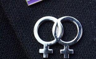 Gros plan d'un insigne lesbien et du drapeau homosexuel réalisé le 10  mars 2007 devant la maire de Morlaix lors d'une manifestation  rassemblant une trentaine de personnes pour demander le droit au mariage  homosexuel.