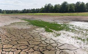 Un étang dans le sud de la France, à sec (illustration).