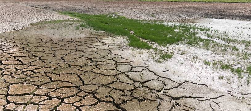 Un étang dans le sud de la France, à sec (illustration)