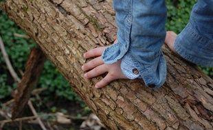 Un adolescent dans une forêt