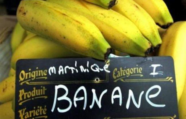 banane sexe gay soeur me donner pipe
