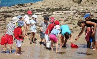 Le 20 juillet 2006 - Une colonie de vacances à Saint-Lunaire en Bretagne. Observation de la faune et la flore à marée basse.