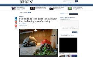 Capture d'écran du site du «Denver Post», montrant la tortue Cléopâtre et sa coquille de protection imprimée en 3D.