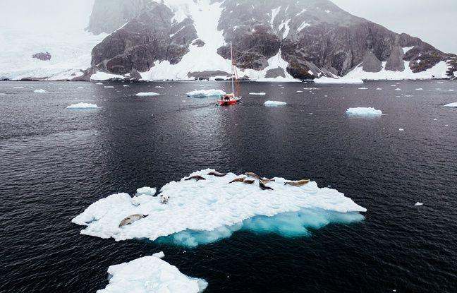 648x415 phoques petit iceberg large peninsule antarctique