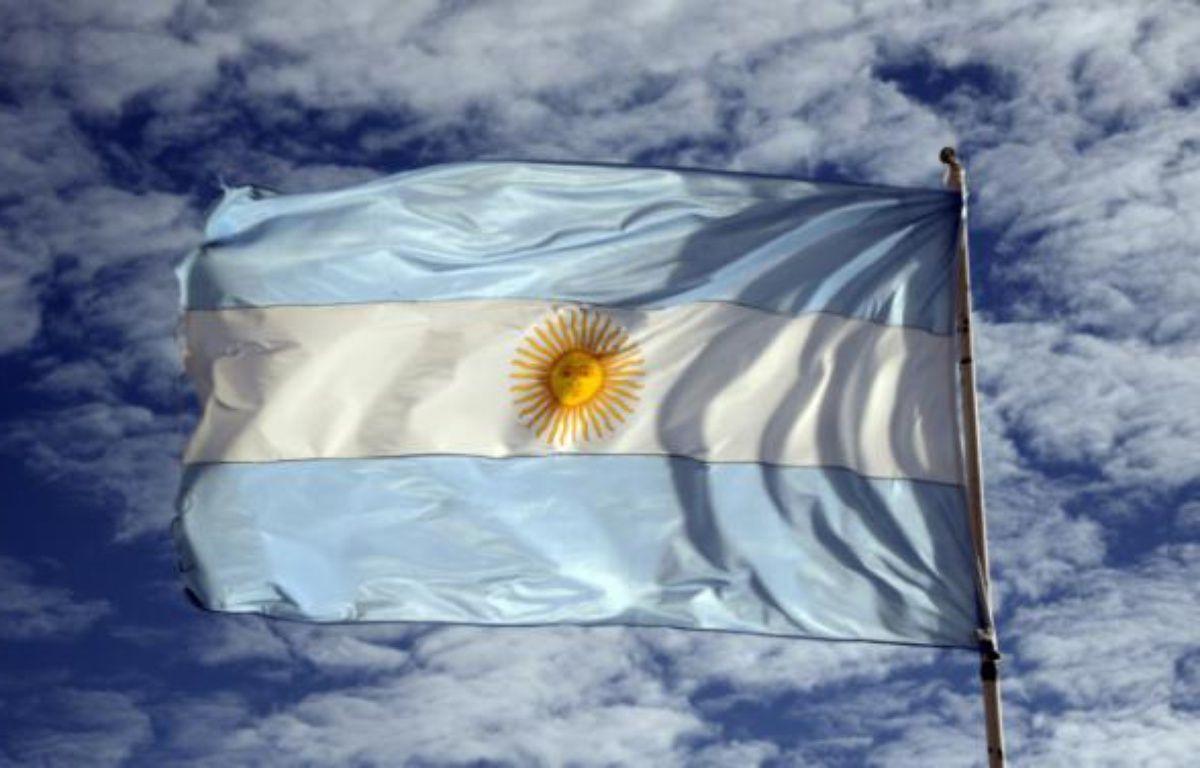 Le drapeau argentin flottant à Los Glaciares, dans la province de Santa Cruz, dans le sud de l'Argentine, le 18 mars 2014 – MARIO GOLDMAN AFP