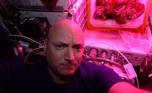 L'astronaute Scott Kelly devant la salade de l'ISS, août 2015.