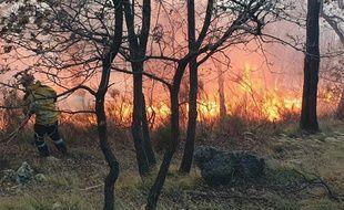 Un incendie dans les Alpes-Maritimes en février dernier.