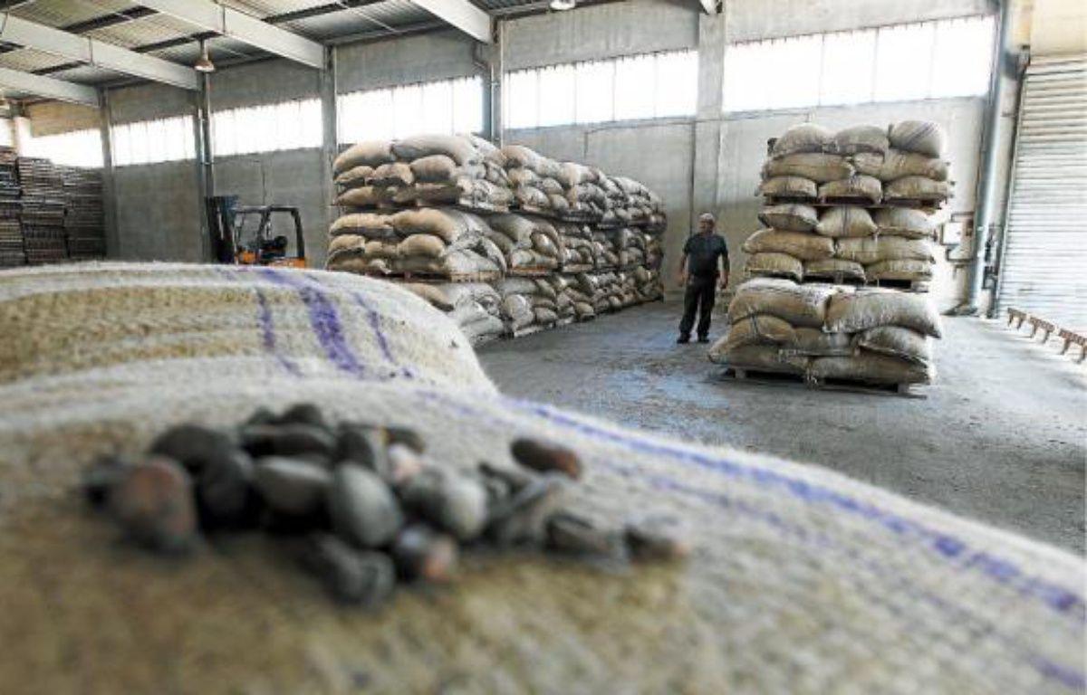 Une vingtaine de personnes travaillent sur le site pour remettre en route les installations. Près de 8 tonnes de fèves de cacao ont déjà été transformées. –  P.MAGNIEN/20 MINUTESP.MAGNIEN/20 MINUTES