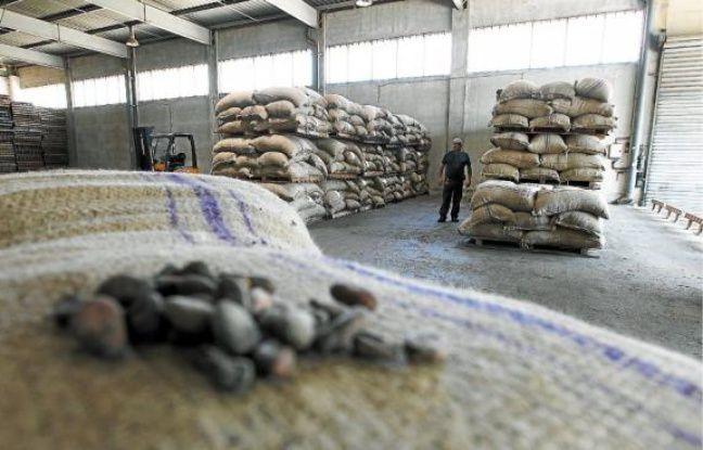 Une vingtaine de personnes travaillent sur le site pour remettre en route les installations. Près de 8 tonnes de fèves de cacao ont déjà été transformées.