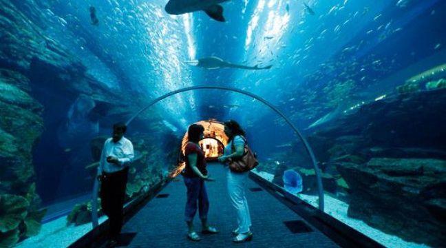 dubai le plus grand aquarium du monde a des fuites. Black Bedroom Furniture Sets. Home Design Ideas