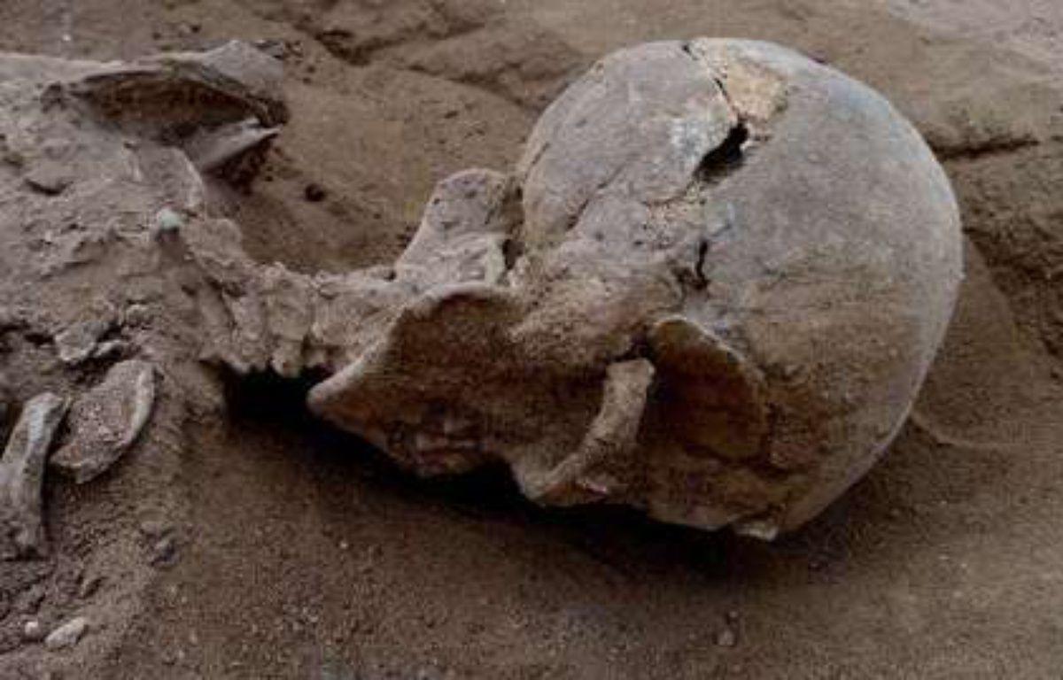 Violemment matraqué, cet homme est l'une des victimes d'un massacre perpétré au Kenya il y a 10.000 ans et découvert  par des archéologues en janvier 2015. – Marta Mirazon Lahr/AFP