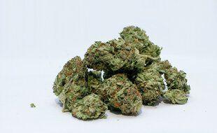 De l'herbe de cannabis (illustration).