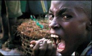 """""""Le Cauchemar de Darwin"""", sorti sur les écrans en 2005, est un pamphlet contre la mondialisation, l'exploitation à outrance des ressources naturelles, et la misère humaine autour du lac Victoria en Tanzanie. Ce documentaire, qui fait l'objet d'une polémique pour ses inexactitudes présumées, a reçu plusieurs prix dont, en France, le César 2006 du meilleur premier film."""