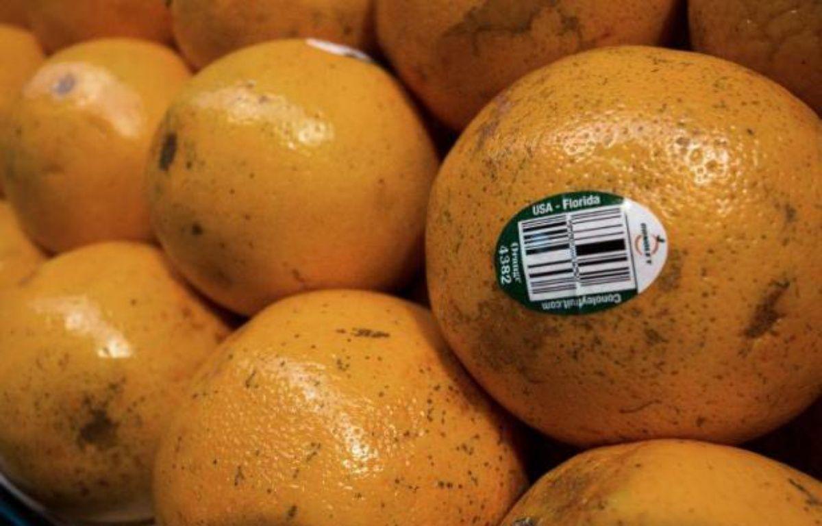 La récolte d'oranges devrait chuter à son plus bas depuis 29 ans et le prix du jus est à son plus haut depuis deux ans à New York – Paul J. Richards AFP