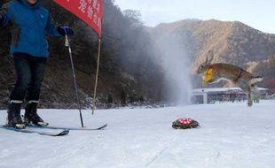 La tortue a battu un lapin lors d'une course à ski en Chine.