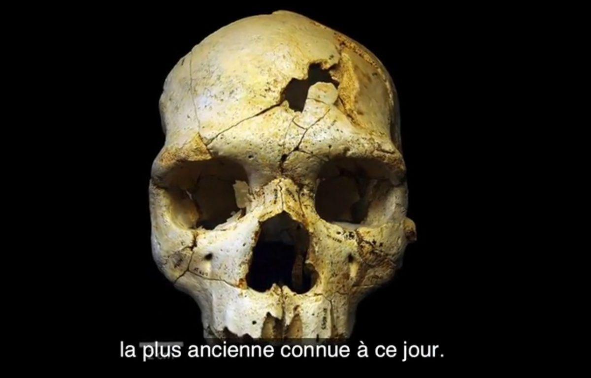 Le premier meurtre humain. GQ/Plos One – Plos One